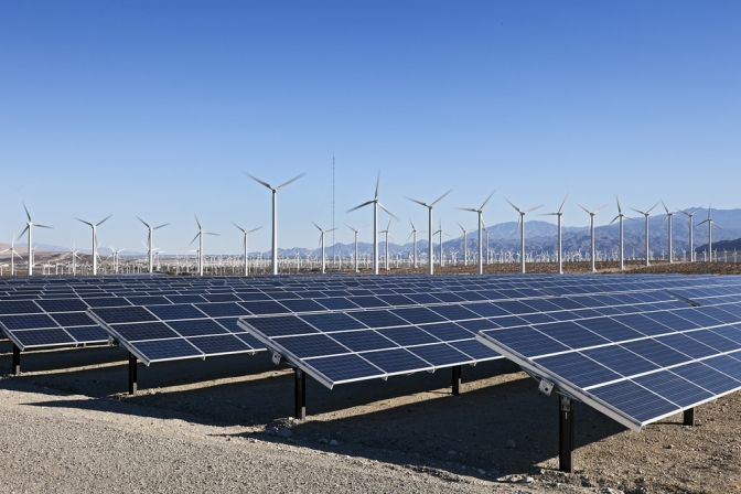 How Corporates are Taking the Lead in Renewable Energy