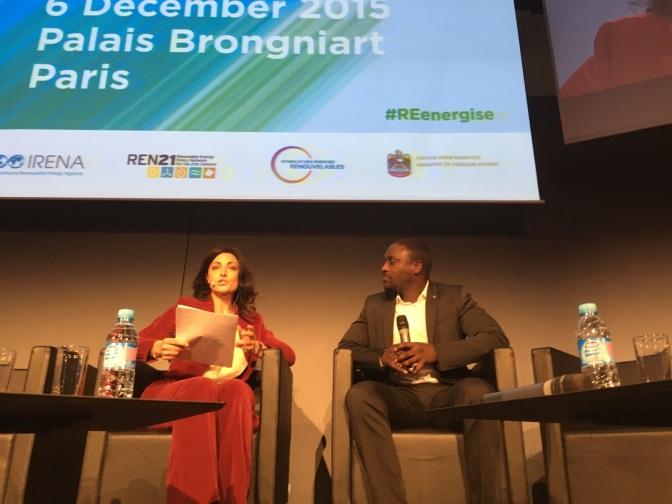 RE-Energising the Future: Renewable Energy Solutions Showcased in Paris