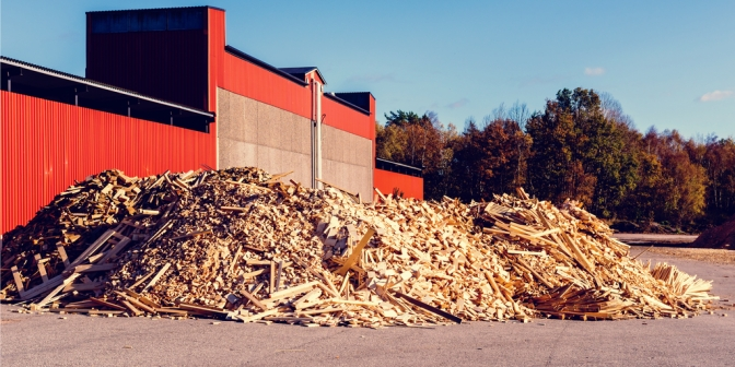 Developing Bankable Woody Biomass Projects