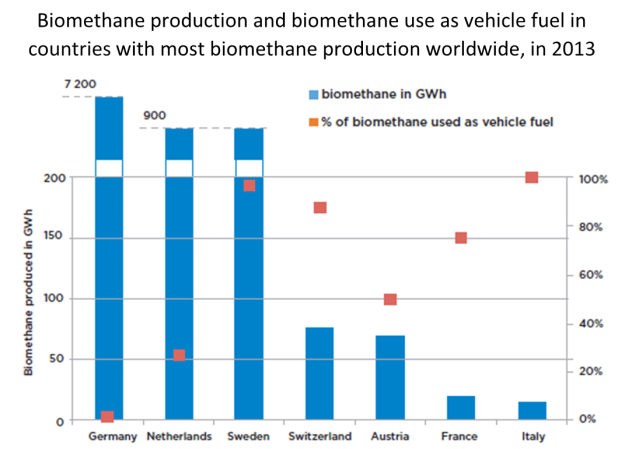 Biomethane production and biomethane use as vehicle fuel in countries with most biomethane production worldwide, in 2013